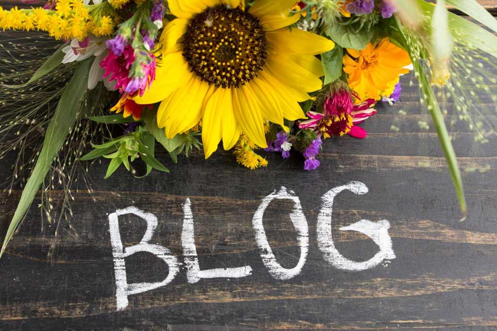 Girasol con fondo de madera y la palabra blog escrita en tiza blanca