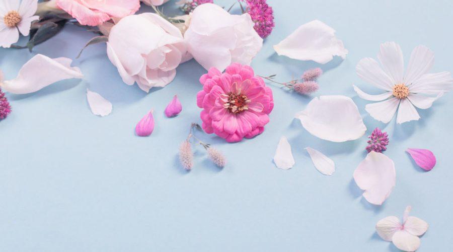 Flores en todas las epocas
